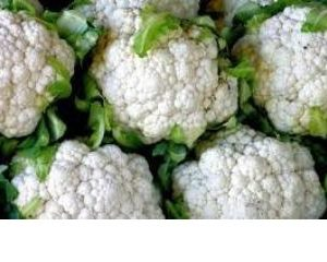 Cauliflower (Phool Gobi)_3