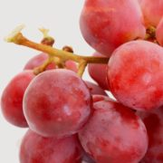 Red Grapes_1